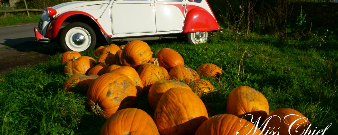 pumpkins and 2cv dolly