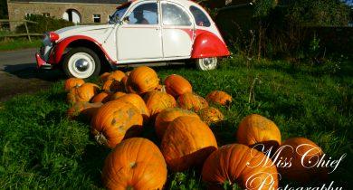 pumpkins and 2cv dolly